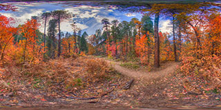 Autumn Trail Panorama