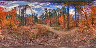 Autumn Trail Panorama