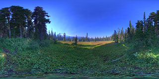 Elk Meadow 3 Panorama