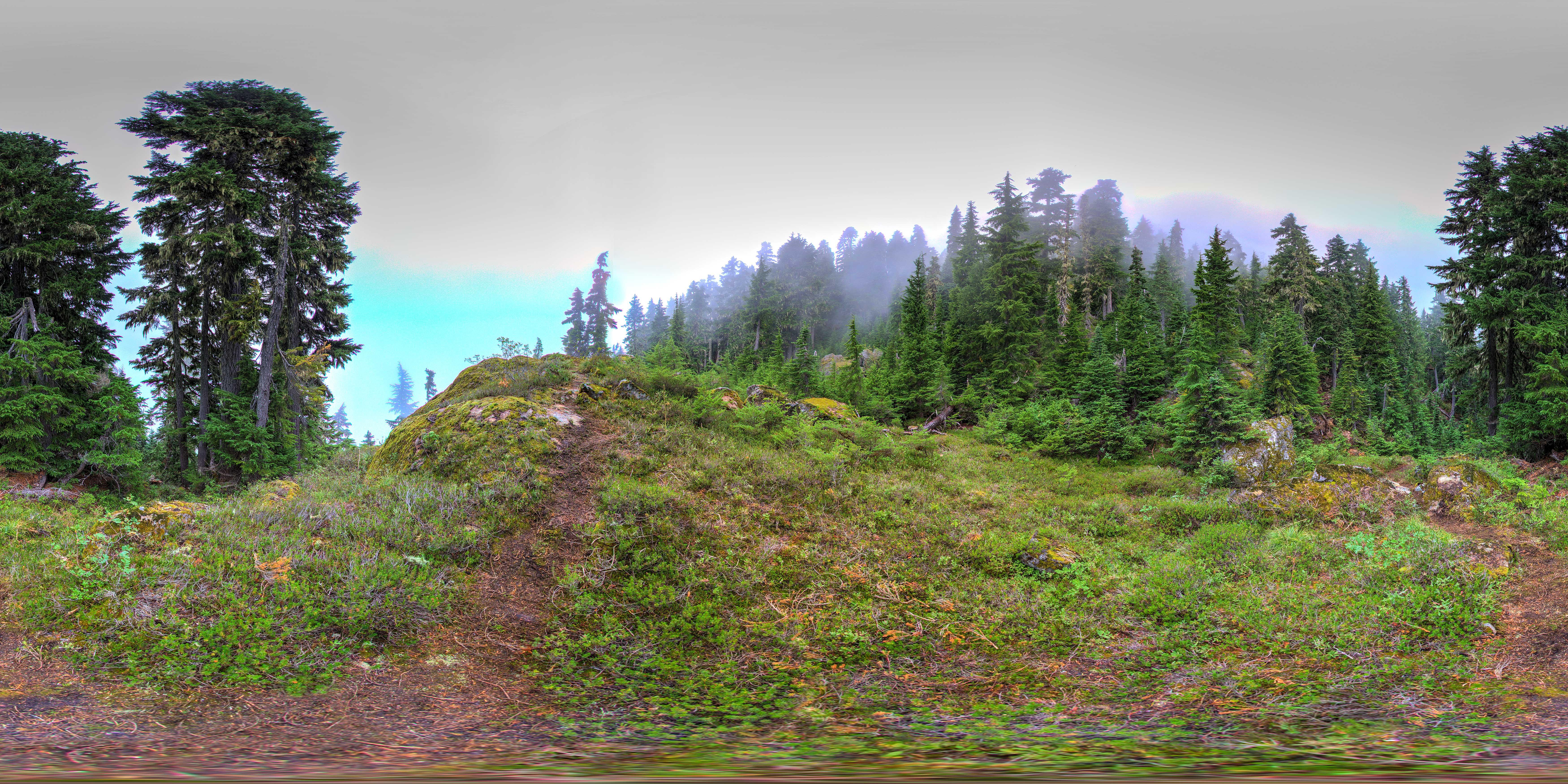 Mt. Ellinor Panorama